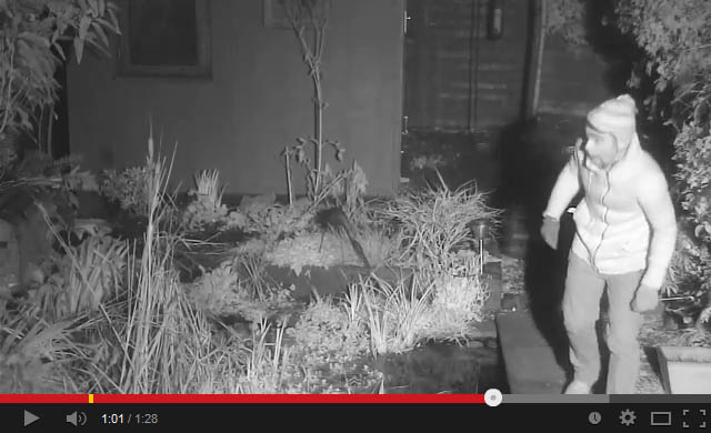 Burglary-suspect-caught-on-wildlife-camera